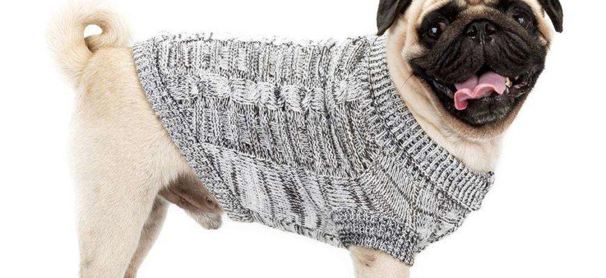 Как связать свитер для собаки   спицами, для начинающих, схемы, крючком