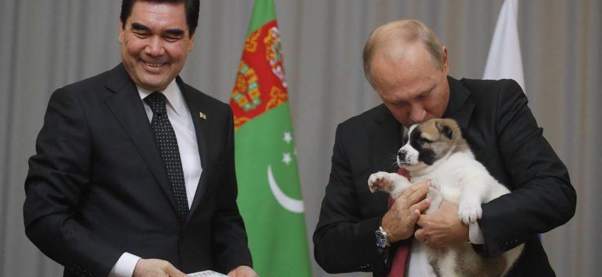 Собаки Путина: породы, как зовут, описание и фото | PetGuru