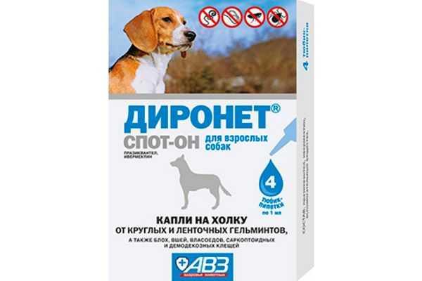 Виды и особенности препаратов для дегельминтизации собак