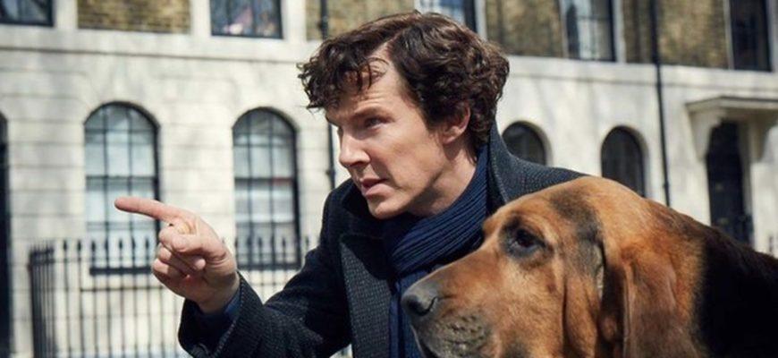Шерлок: общие места в сериале и книгах Конан Дойля   Lingualeo Блог