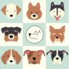 Собаки и щенки в дар в Москве, бесплатно взять или отдать собаку в хорошие добрые руки даром