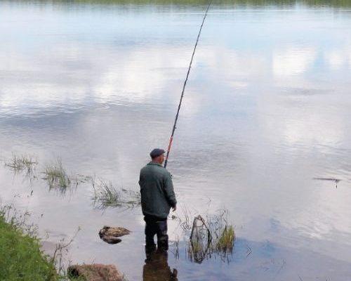 С болонкой на Оку / Поплавочная удочка / Блоги о рыбалке