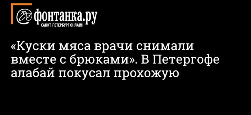Алабай отгрыз руку матери двоих детей в Подмосковье  // НТВ.Ru