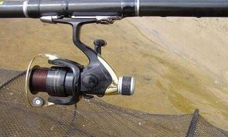 Выбор катушки для болонской ловли рыбы